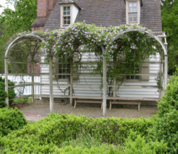 Fig.59, Bower in cottage garden at Colonial Williamsburg